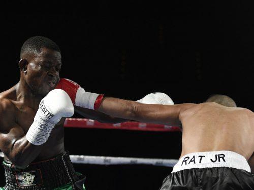 Velada Boxeo